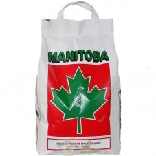 Mixtura Canarios T3 Platino (Manitoba)
