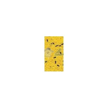 Pasta de cria - factor amarillo 5  kg