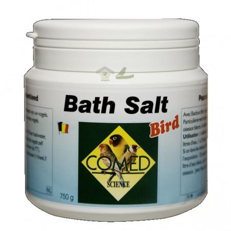 Balt Salt Bird