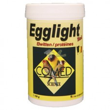 Egglight Bird