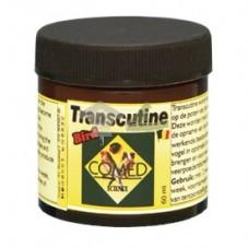 Transcutine (Patas limpias)