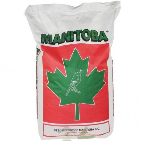 Mixtura Exoticos Extra Fancy Manitoba