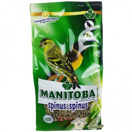 Mxt. Spinus & Spinus (Manitoba)