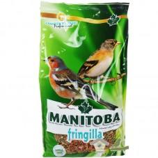 Mxt. Fringilia (Manitoba)
