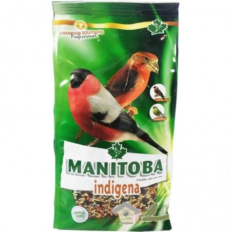 Mixtura Indígena (Manitoba)