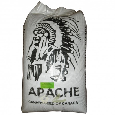 Alpiste Apache