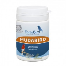 Mudabird