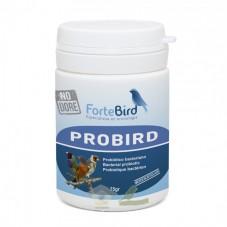 Probird