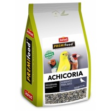 Achicoria