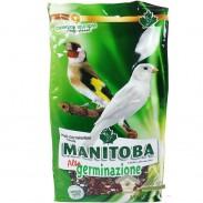 semillas germinacion para aves